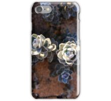 Thriving in the Sand iPhone Case/Skin