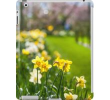 Spring Daffodils in Keukenhof Garden iPad Case/Skin
