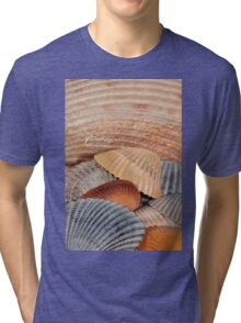 Colorful Seashells Tri-blend T-Shirt