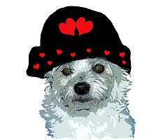 dog with a heart cap Photographic Print