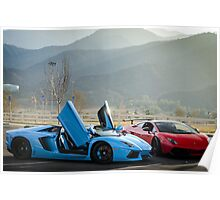 Not a Lamborghini Aventador and Gallardo Super Trofeo Stradale :) Poster