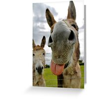 Watch and Learn Kid Watch and Learn! Greeting Card