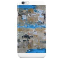 The birds view iPhone Case/Skin