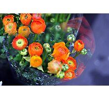 Rainy flowers  Photographic Print