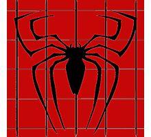 Graphic Spider Logo Photographic Print