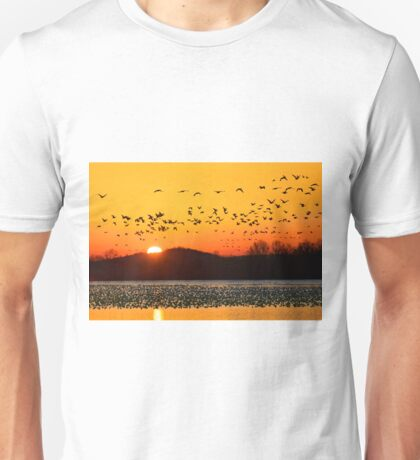 Snow Geese Flying at Sunrise Unisex T-Shirt