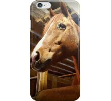 Neighborhood Horsey iPhone Case/Skin