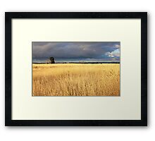 Grassy field in the Australian countryside. Framed Print