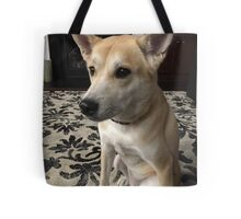 Miko; Akita - Shiba Enu Mix If you like, please purchase, try a cell phone cover thanks Tote Bag