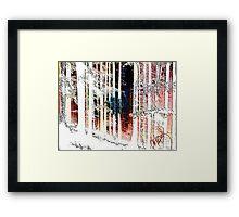 Colorado Mountain Trees  Framed Print