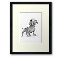 Max the Dog Framed Print