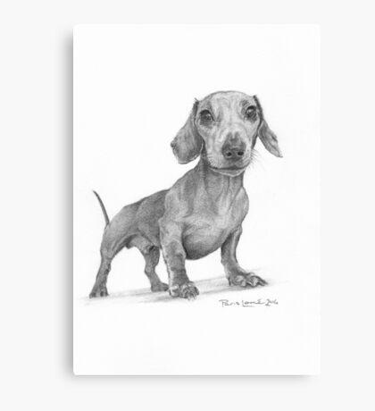 Max the Dog Canvas Print