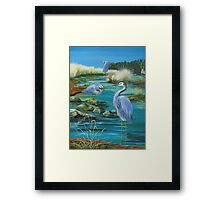 GALLIMAUFRY ~ White-faced Herons in Estuary by tasmanianartist Framed Print