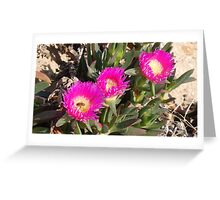 Dune Flowers Greeting Card