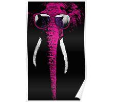 crazy elephant Poster