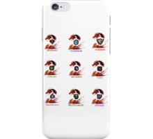 Guild Wars 2 - Classes iPhone Case/Skin