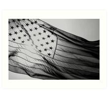 Grey Flag Art Print
