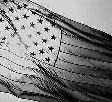 Grey Flag by Daniel Owens