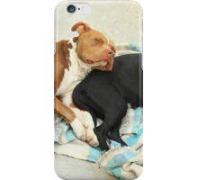 Dogs Sleeping iPhone Case/Skin