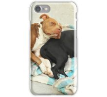 Dogs Sleeping iPhone Case/Skin
