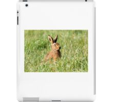 """ March Hare "" iPad Case/Skin"