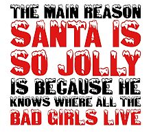 Santa Claus George Carlin Quote Funny Humour Comedy Christmas Photographic Print