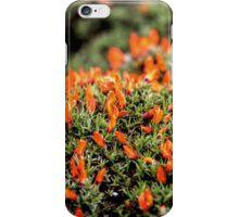 Fire Bush iPhone Case/Skin