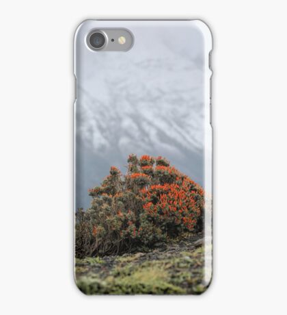Fire and Mountain iPhone Case/Skin