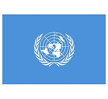 Flag of the United Nations, FLAG OF THE UN, PURE AND SIMPLE Photographic Print