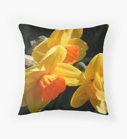 Bi- Coloured Daffodils Throw Pillow