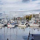 Victoria BC Inner Harbour by AnnDixon
