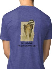 Funny message:I'm just ignoring you! Tri-blend T-Shirt