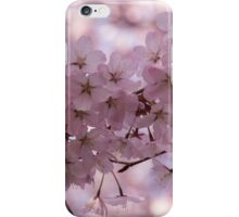 Silver Bark and Pink Blossoms iPhone Case/Skin