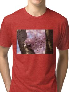 Silver Bark and Pink Blossoms Tri-blend T-Shirt