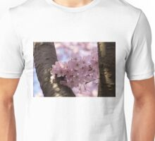 Silver Bark and Pink Blossoms Unisex T-Shirt
