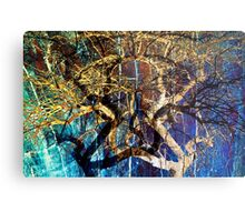The mysterious face of nature Metal Print