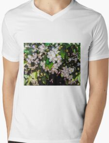 Tree Blossoms Mens V-Neck T-Shirt
