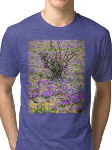 Beauty Amongst Thorns Tri-blend T-Shirt