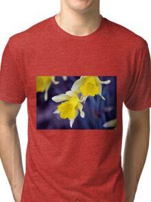 Daffodils Tri-blend T-Shirt
