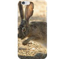 Watchful Rabbit iPhone Case/Skin