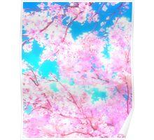 Cherry Blossom Sakura Tree Poster
