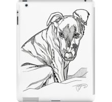 Chrissie - The Autumn Blessing iPad Case/Skin