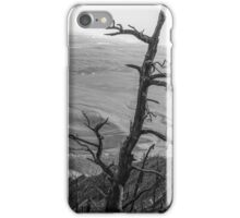 Stark Tree iPhone Case/Skin