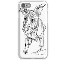 Belle - Bouncing Baby Roo iPhone Case/Skin