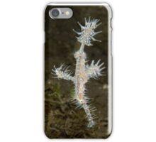 Ornate Ghostpipefish - Solenostomus paradoxus iPhone Case/Skin