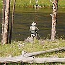 Fly fishing in Yellowstone by Mary Carol Story