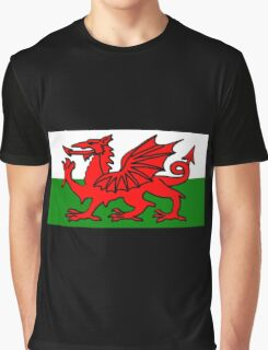 Welsh Flag Graphic T-Shirt
