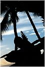 Maui Silhouette - Hawaii by DJ Florek