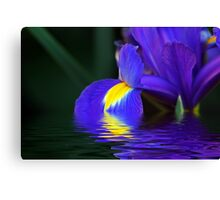 Reflections of Iris Canvas Print