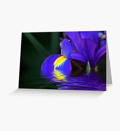 Reflections of Iris Greeting Card